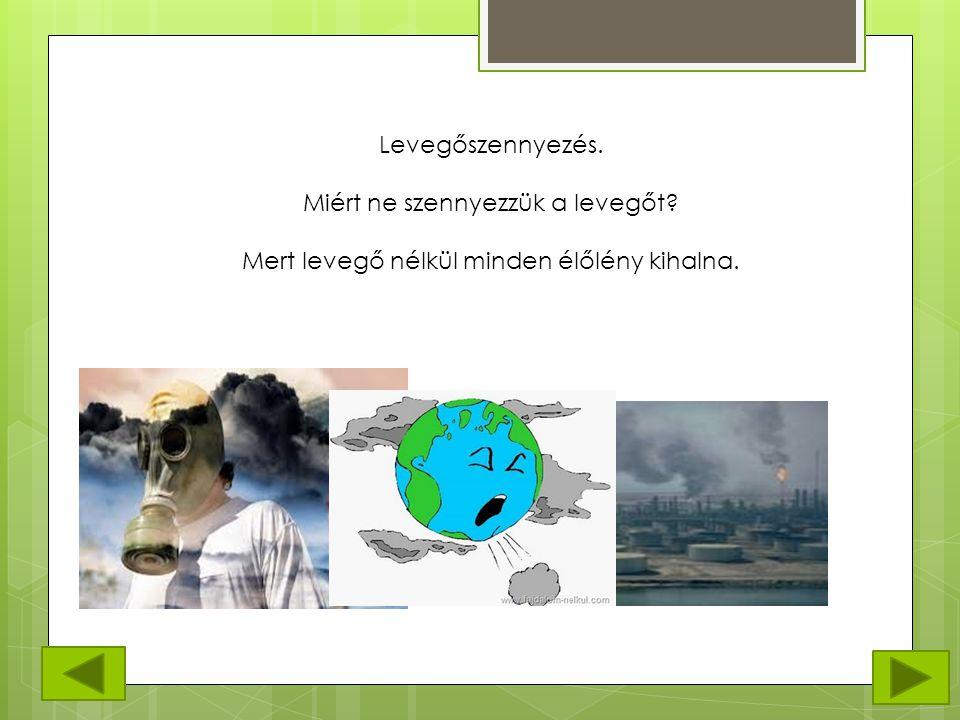 Levegőszennyezés. Miért ne szennyezzük a levegőt? Mert levegő nélkül minden élőlény kihalna.