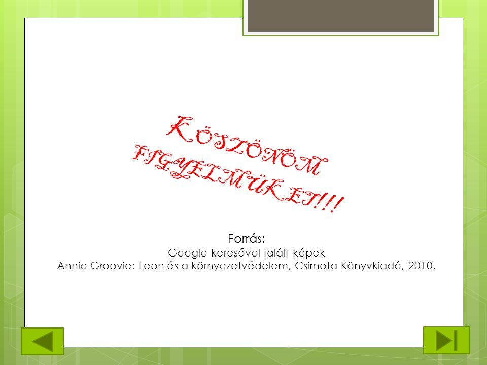 K ÖSZÖNÖM FIGYELMÜKET !!! Forrás: Google keresővel talált képek Annie Groovie: Leon és a környezetvédelem, Csimota Könyvkiadó, 2010.