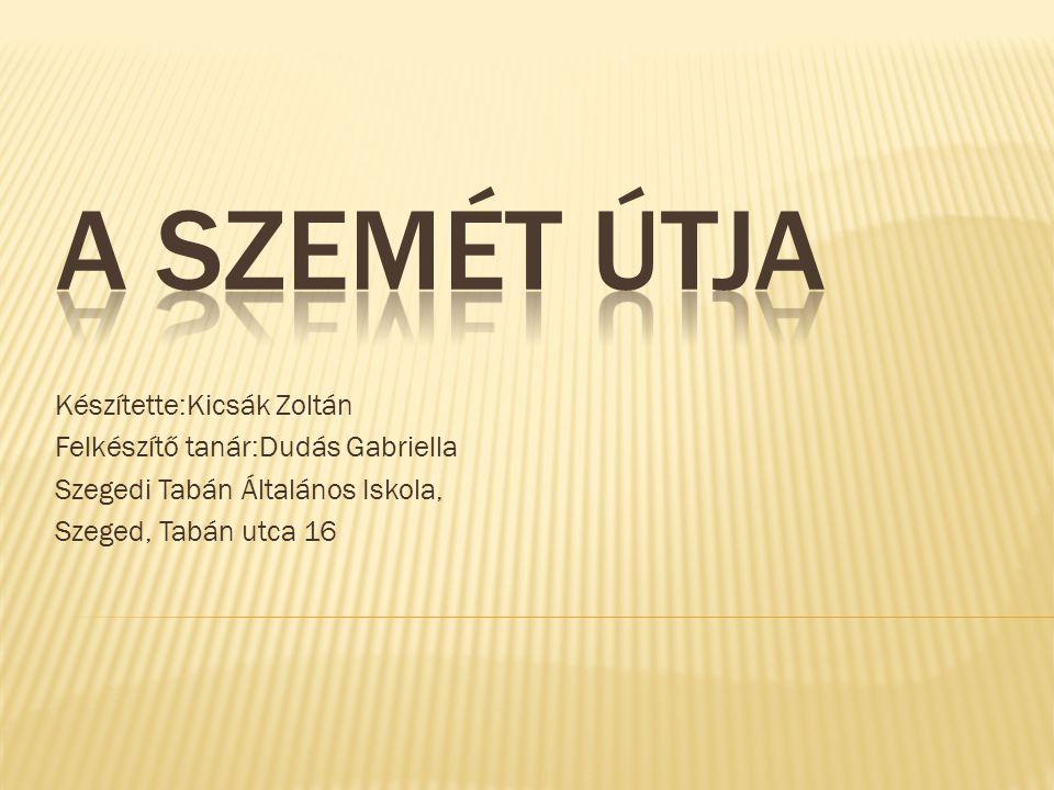 Készítette:Kicsák Zoltán Felkészítő tanár:Dudás Gabriella Szegedi Tabán Általános Iskola, Szeged, Tabán utca 16