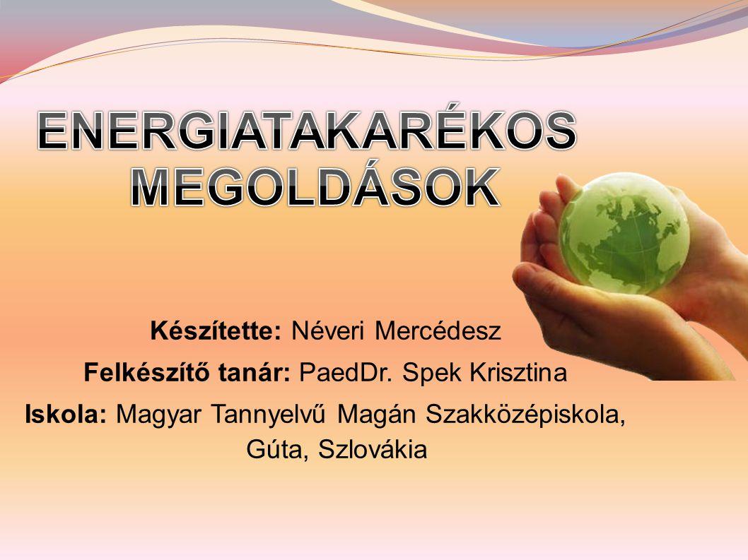 Készítette: Néveri Mercédesz Felkészítő tanár: PaedDr.