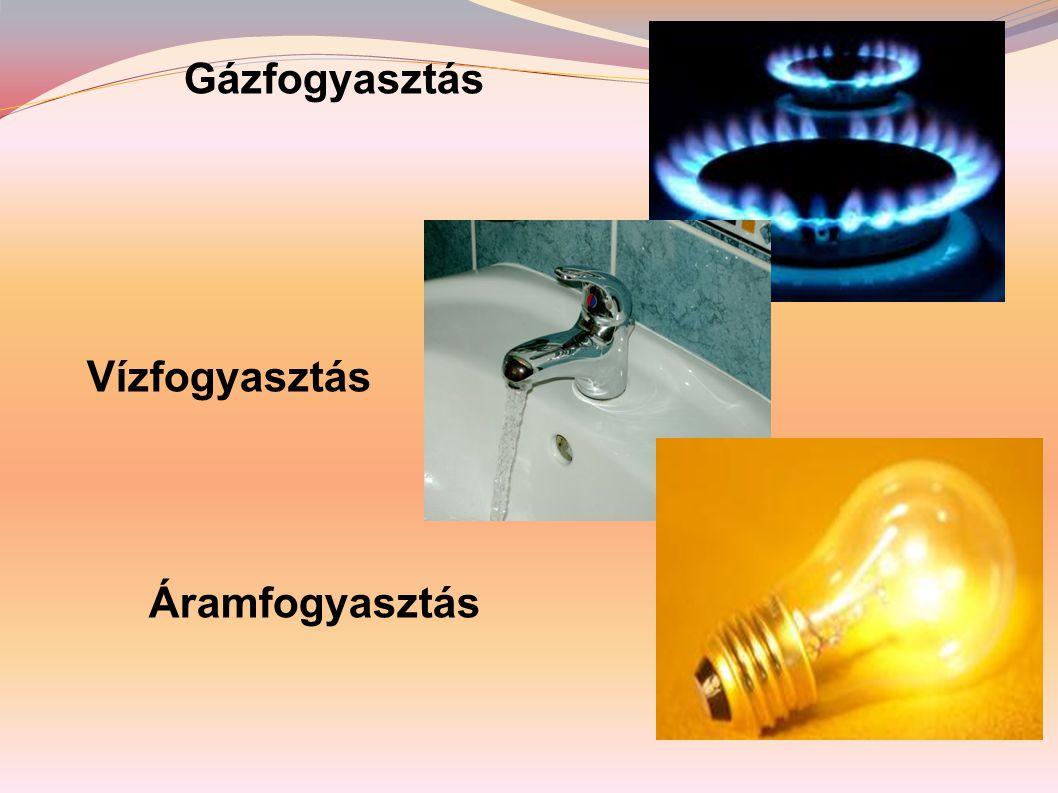 A készletek végesek, a lakosság pedig még nem ismeri az energiatakarékoskodás korszer ű módszereit.