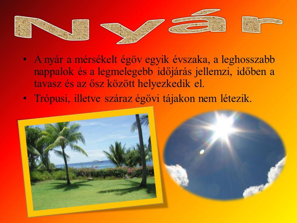 A nyár a mérsékelt égöv egyik évszaka, a leghosszabb nappalok és a legmelegebb időjárás jellemzi, időben a tavasz és az ősz között helyezkedik el.