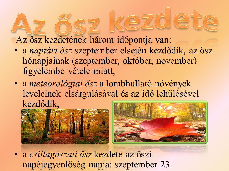 a naptári ősz szeptember elsején kezdődik, az ősz hónapjainak (szeptember, október, november) figyelembe vétele miatt, a meteorológiai ősz a lombhullató növények leveleinek elsárgulásával és az idő lehűlésével kezdődik, a csillagászati ősz kezdete az őszi napéjegyenlőség napja: szeptember 23.
