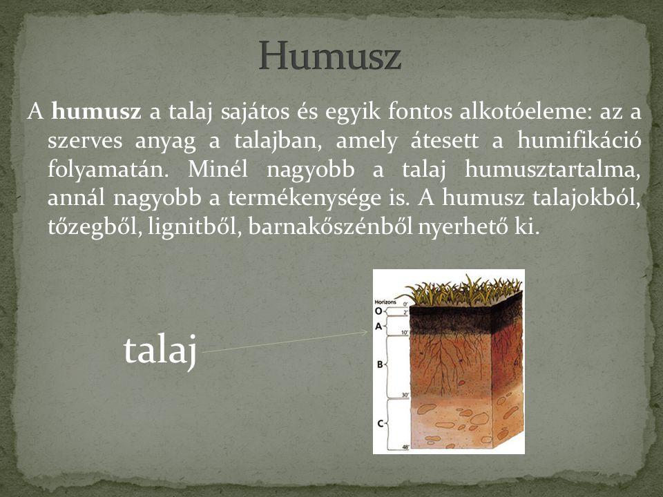 A humusz a talaj sajátos és egyik fontos alkotóeleme: az a szerves anyag a talajban, amely átesett a humifikáció folyamatán.