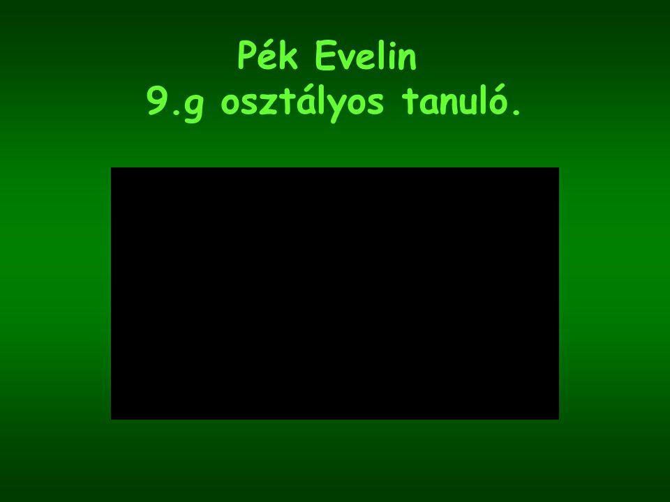 Köszönettel tartozom: Marton Anikó tanárnőnek, Herbert Zoltán tanár úrnak, Anyukámnak, osztálytársaimnak.