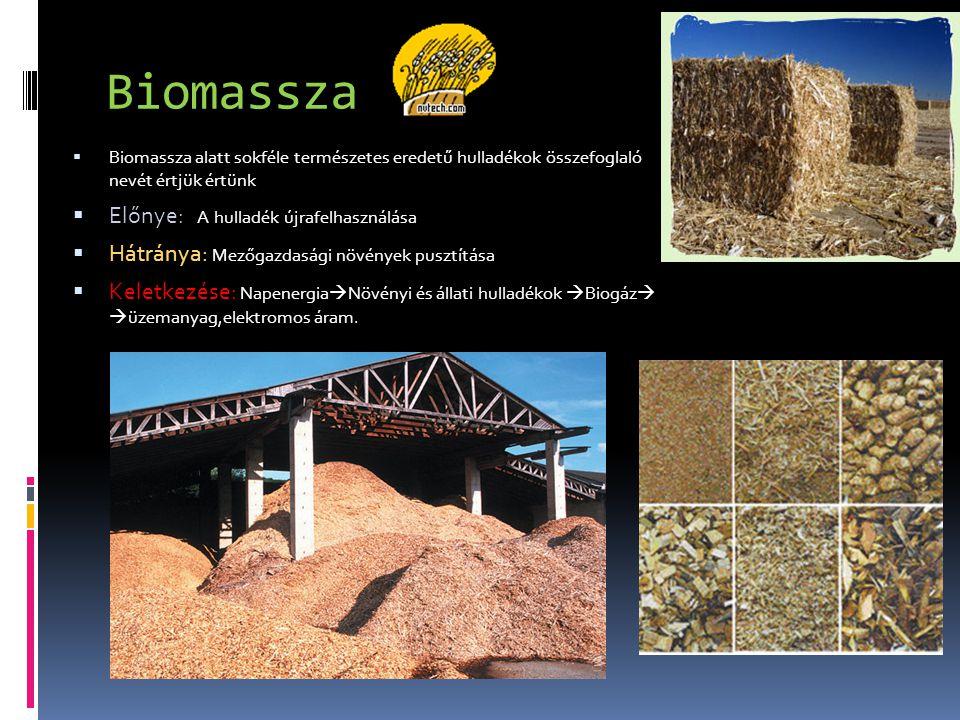 Biomassza  Biomassza alatt sokféle természetes eredetű hulladékok összefoglaló nevét értjük értünk  Előnye: A hulladék újrafelhasználása  Hátránya: Mezőgazdasági növények pusztítása  Keletkezése: Napenergia  Növényi és állati hulladékok  Biogáz   üzemanyag,elektromos áram.