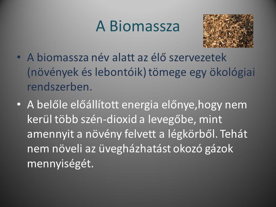A Biomassza A biomassza név alatt az élő szervezetek (növények és lebontóik) tömege egy ökológiai rendszerben.