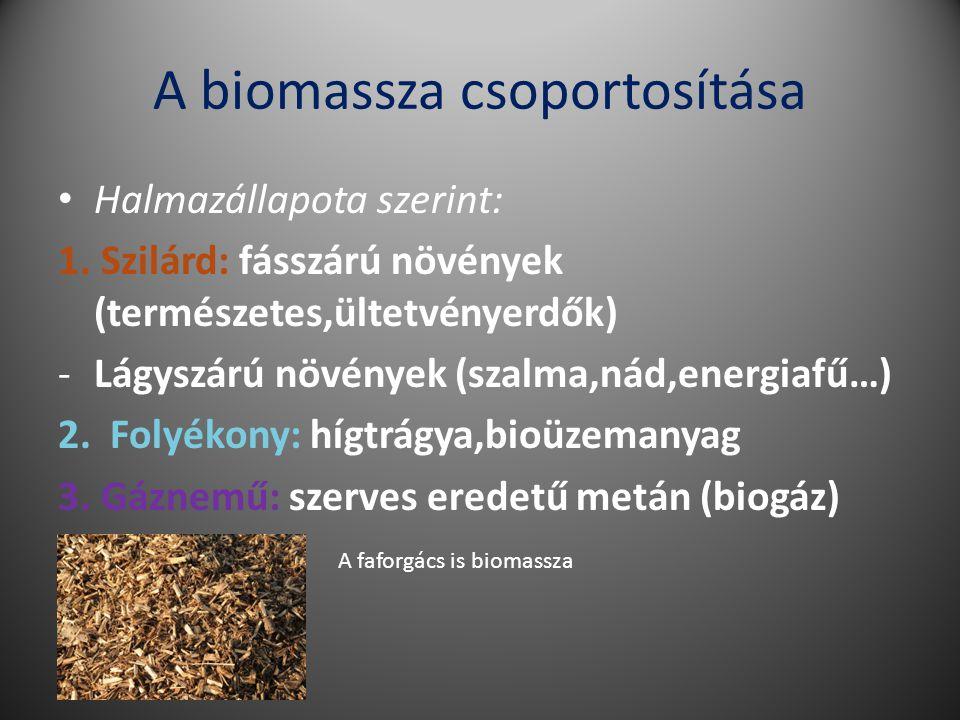 A biomassza csoportosítása Halmazállapota szerint: 1.