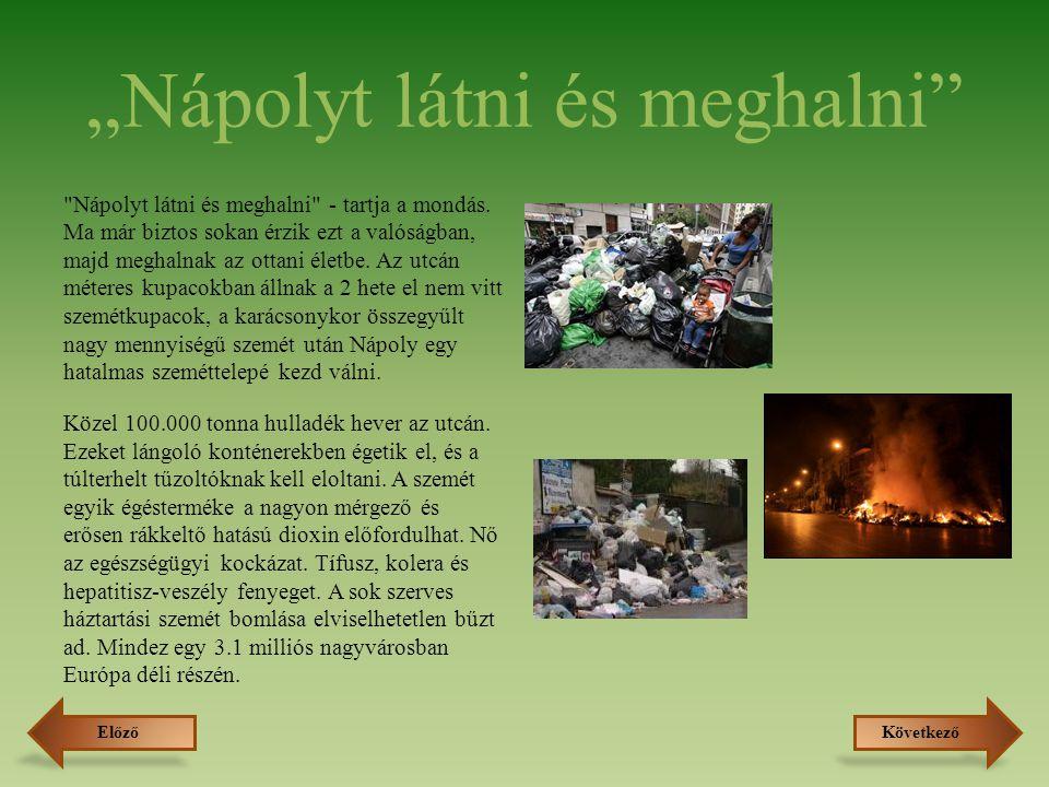 A szelektív hulladékgyűjtés okai Újrahasznosítás: A legjobb hulladék a nem keletkező hulladék .
