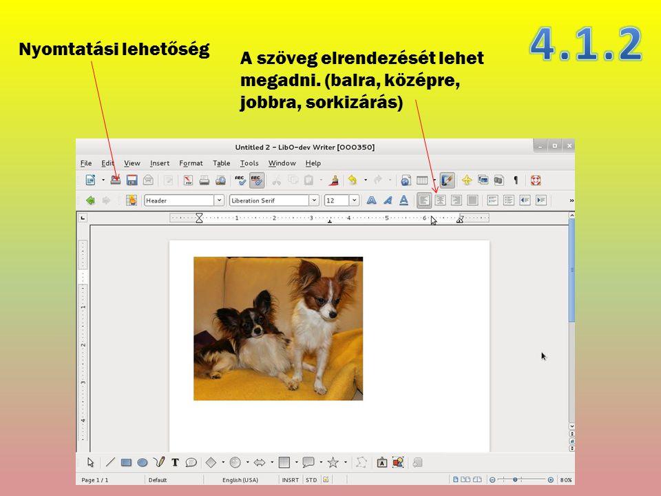 A szöveg elrendezését lehet megadni. (balra, középre, jobbra, sorkizárás) Nyomtatási lehetőség