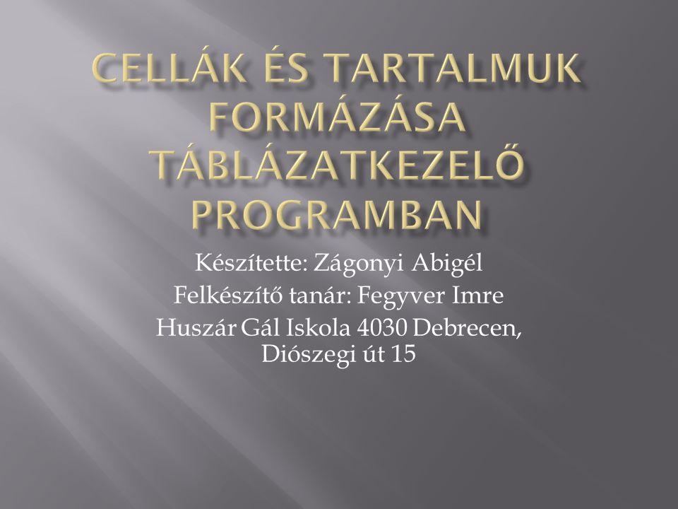 Készítette: Zágonyi Abigél Felkészítő tanár: Fegyver Imre Huszár Gál Iskola 4030 Debrecen, Diószegi út 15