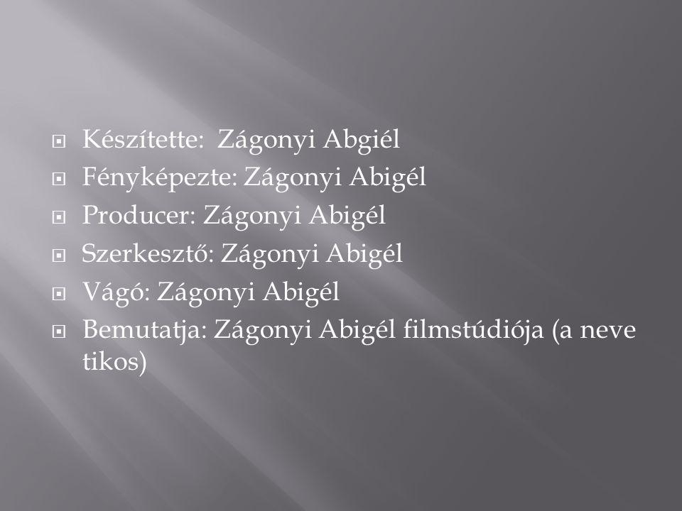  Készítette: Zágonyi Abgiél  Fényképezte: Zágonyi Abigél  Producer: Zágonyi Abigél  Szerkesztő: Zágonyi Abigél  Vágó: Zágonyi Abigél  Bemutatja: