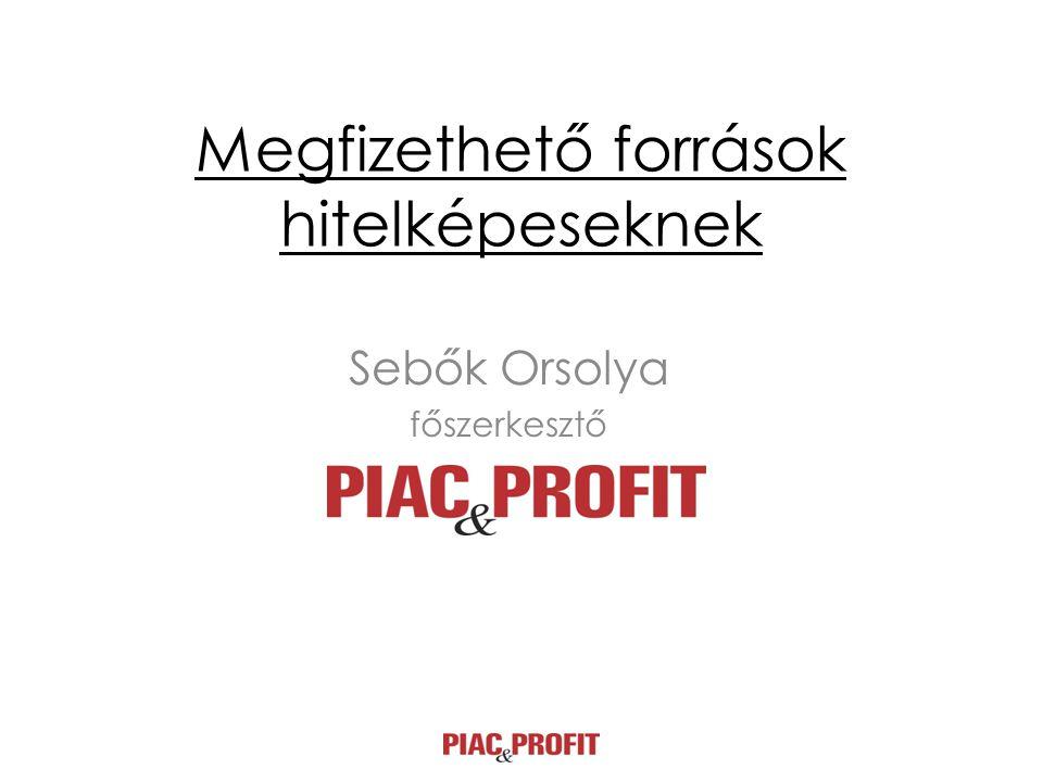 Megfizethető források hitelképeseknek Sebők Orsolya főszerkesztő