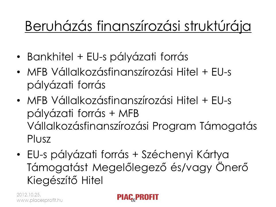 Beruházás finanszírozási struktúrája Bankhitel + EU-s pályázati forrás MFB Vállalkozásfinanszírozási Hitel + EU-s pályázati forrás MFB Vállalkozásfina