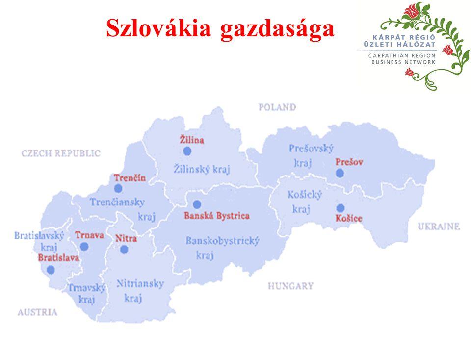 A legnagyobb cégek Szlovákiában 1.Volkswagen – gépkocsigyártás 2.Slovnaft – kőolajfeldolgozás 3.Samsung Electronics – technológia, média, telekommunikáció 4.Szlovák Gázművek 5.U.S.