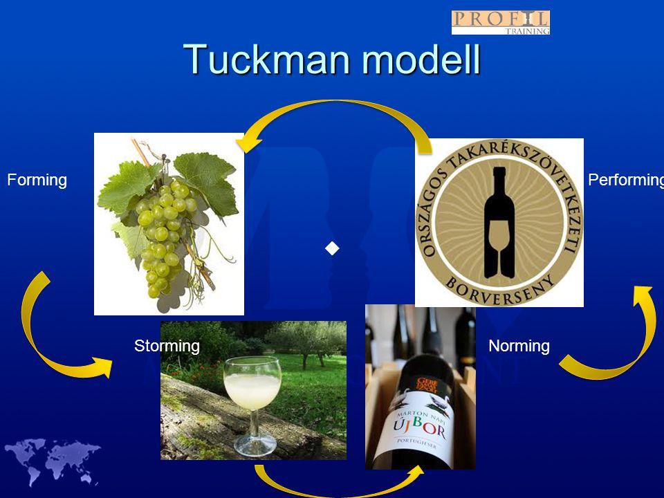 Tuckman modell Forming StormingNorming Performing 