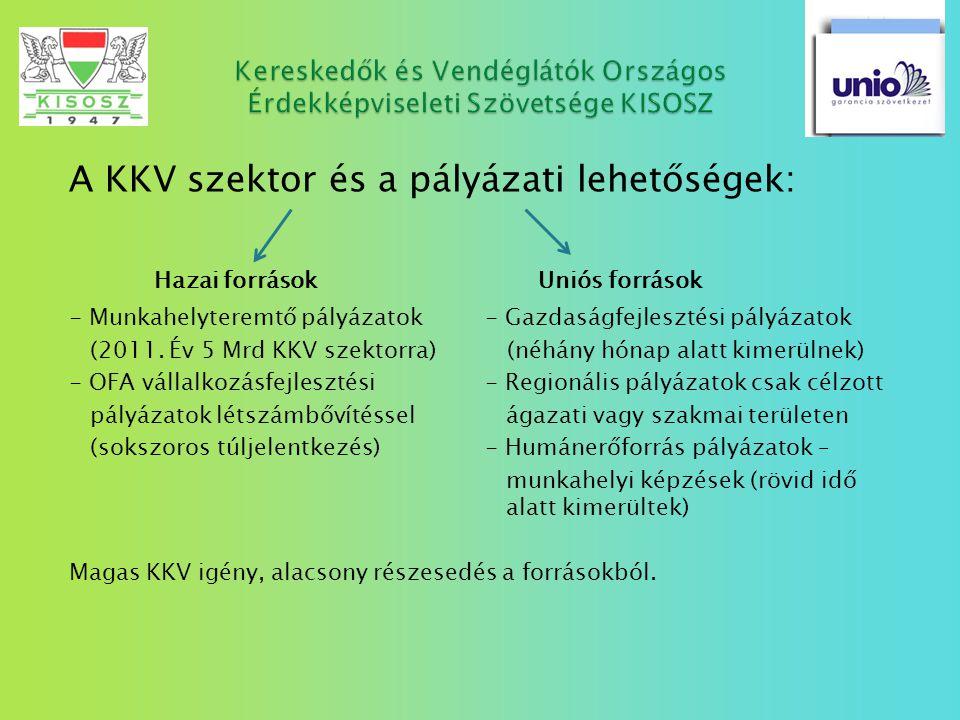 A KKV szektor és a pályázati lehetőségek: Hazai források Uniós források - Munkahelyteremtő pályázatok - Gazdaságfejlesztési pályázatok (2011. Év 5 Mrd