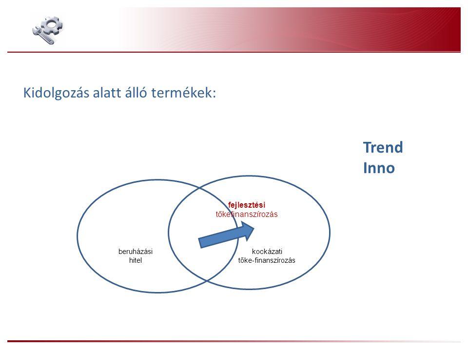 Trend Inno Kidolgozás alatt álló termékek: kockázati tőke-finanszírozás beruházási hitel fejlesztési tőkefinanszírozás