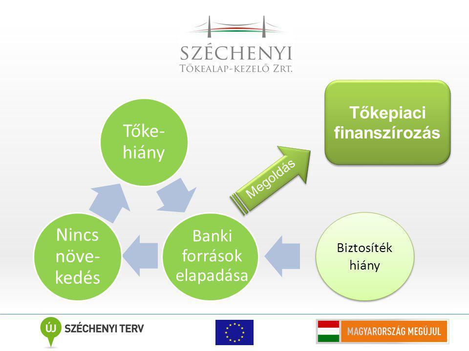 Tőke- hiány Nincs növe- kedés Megoldás Tőkepiaci finanszírozás Banki források elapadása Biztosíték hiány