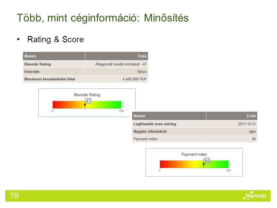 Több, mint céginformáció: Minősítés Rating & Score 19