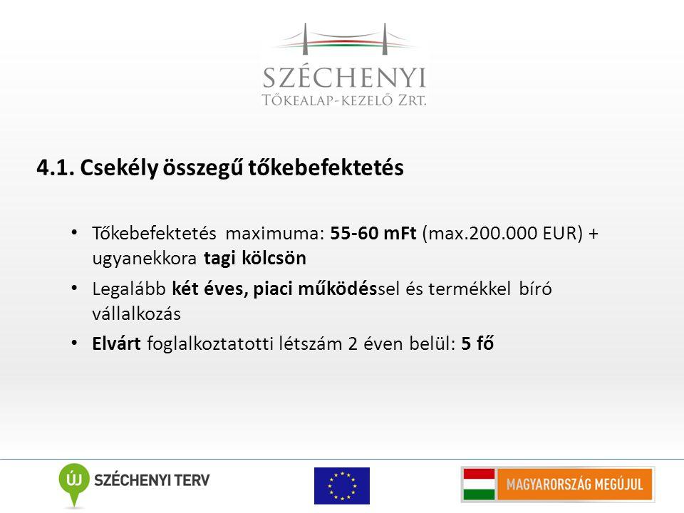 4.1. Csekély összegű tőkebefektetés Tőkebefektetés maximuma: 55-60 mFt (max.200.000 EUR) + ugyanekkora tagi kölcsön Legalább két éves, piaci működésse
