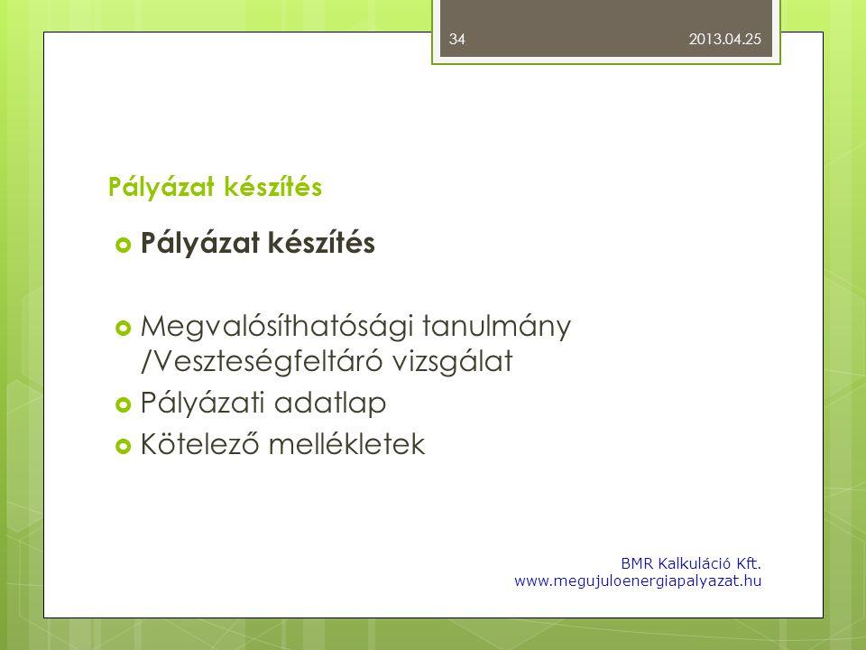 Pályázat készítés  Pályázat készítés  Megvalósíthatósági tanulmány /Veszteségfeltáró vizsgálat  Pályázati adatlap  Kötelező mellékletek 2013.04.25