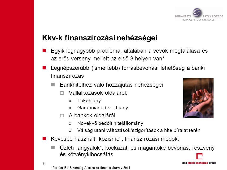 Kkv-k finanszírozási nehézségei 4 | Egyik legnagyobb probléma, általában a vevők megtalálása és az erős verseny mellett az első 3 helyen van* Legnépsz