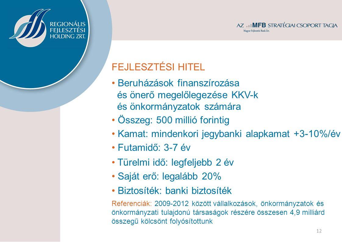 FEJLESZTÉSI HITEL Beruházások finanszírozása és önerő megelőlegezése KKV-k és önkormányzatok számára Összeg: 500 millió forintig Kamat: mindenkori jegybanki alapkamat +3-10%/év Futamidő: 3-7 év Türelmi idő: legfeljebb 2 év Referenciák: 2009-2012 között vállalkozások, önkormányzatok és önkormányzati tulajdonú társaságok részére összesen 4,9 milliárd összegű kölcsönt folyósítottunk Saját erő: legalább 20% 12 Biztosíték: banki biztosíték