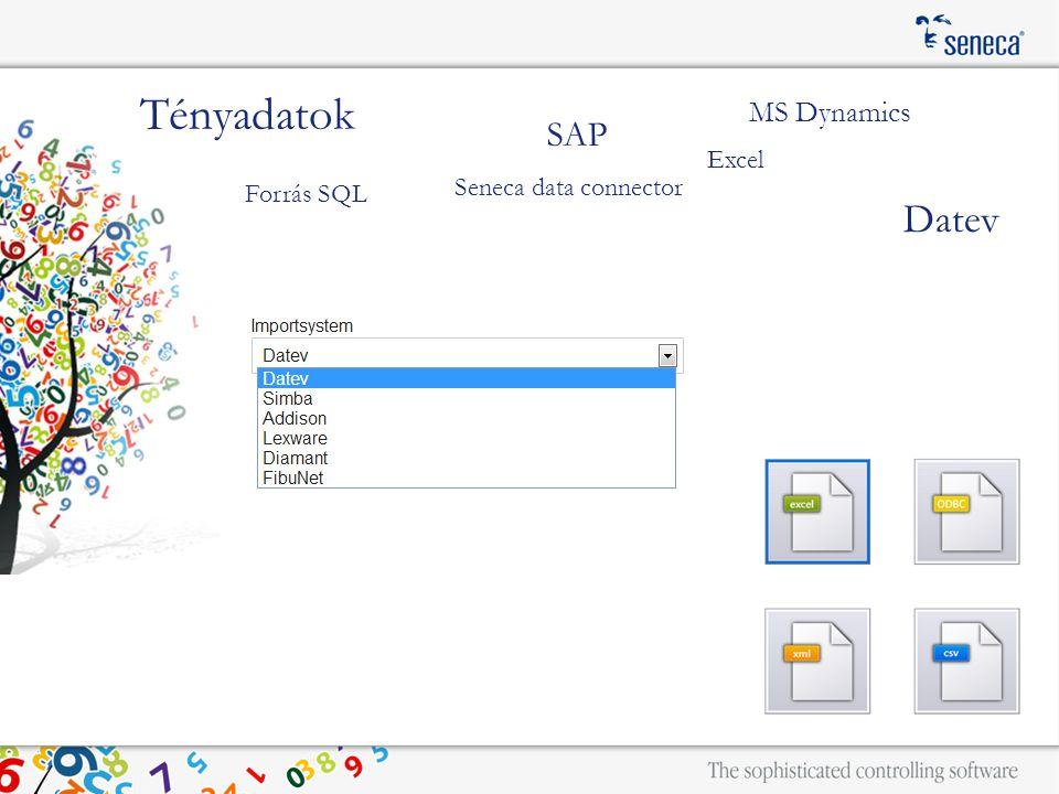 SAP MS Dynamics Tényadatok Seneca data connector Datev Forrás SQL Excel