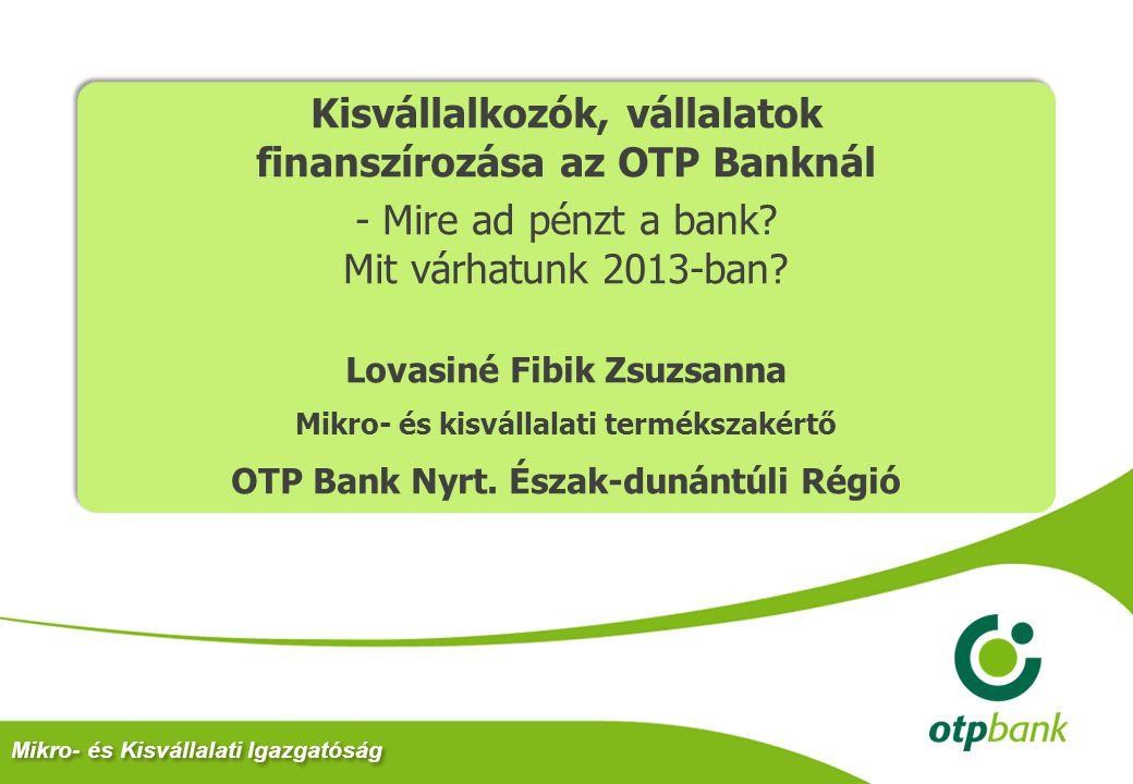 Mikro- és Kisvállalati Igazgatóság Kisvállalkozók, vállalatok finanszírozása az OTP Banknál - Mire ad pénzt a bank? Mit várhatunk 2013-ban? Lovasiné F