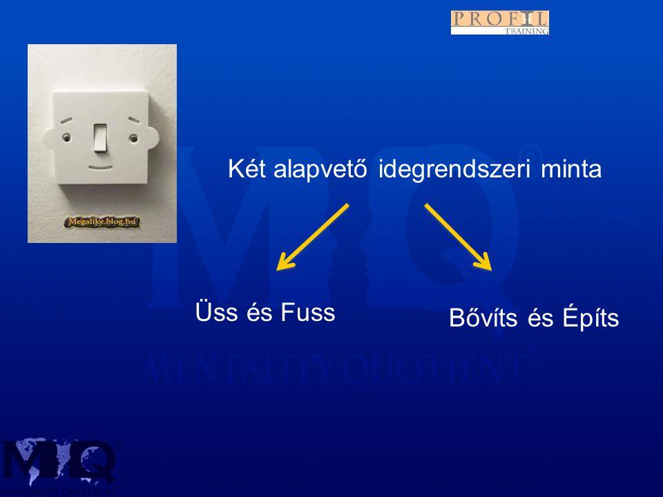 Két alapvető idegrendszeri minta Üss és Fuss Bővíts és Építs