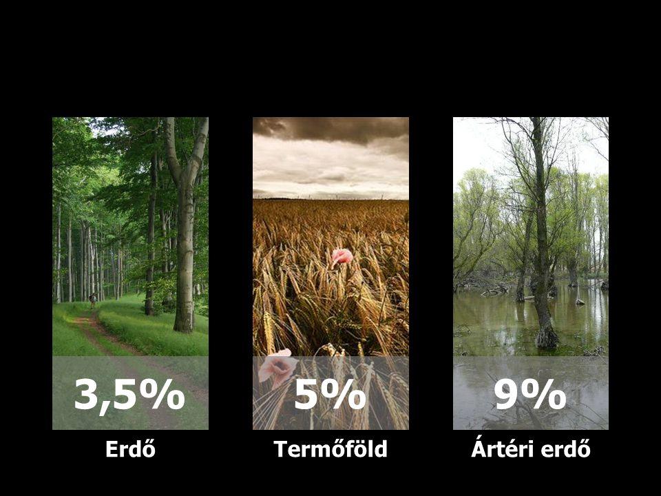 9% 5% 3,5% Erdő Termőföld Ártéri erdő