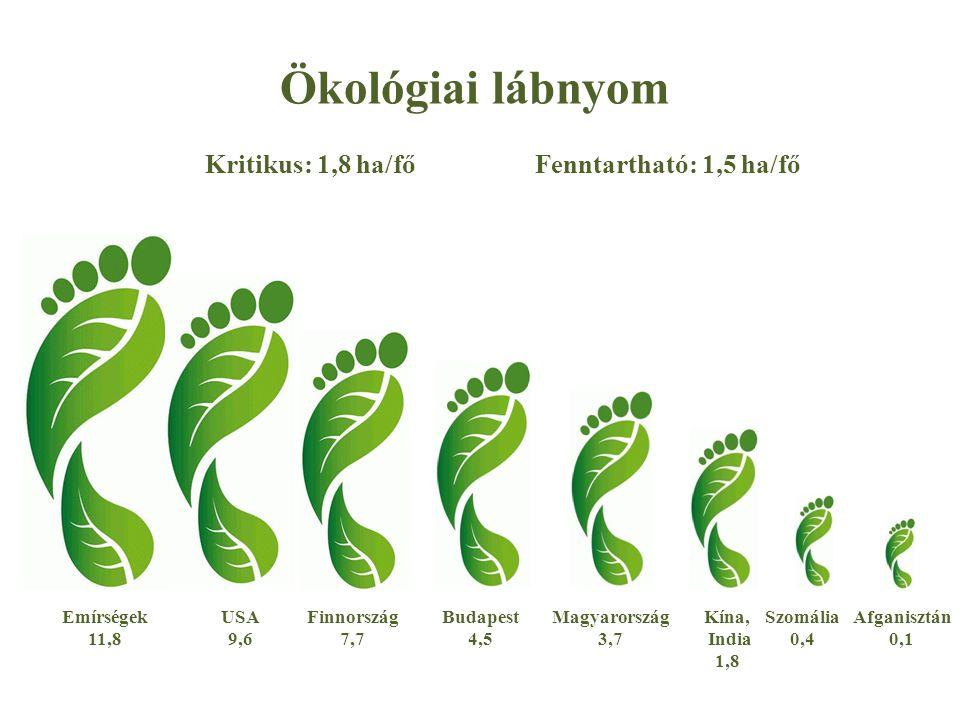 Ökológiai lábnyom Kritikus: 1,8 ha/főFenntartható: 1,5 ha/fő Afganisztán 0,1 Szomália 0,4 Kína, India 1,8 Magyarország 3,7 Budapest 4,5 Finnország 7,7 Emírségek 11,8 USA 9,6