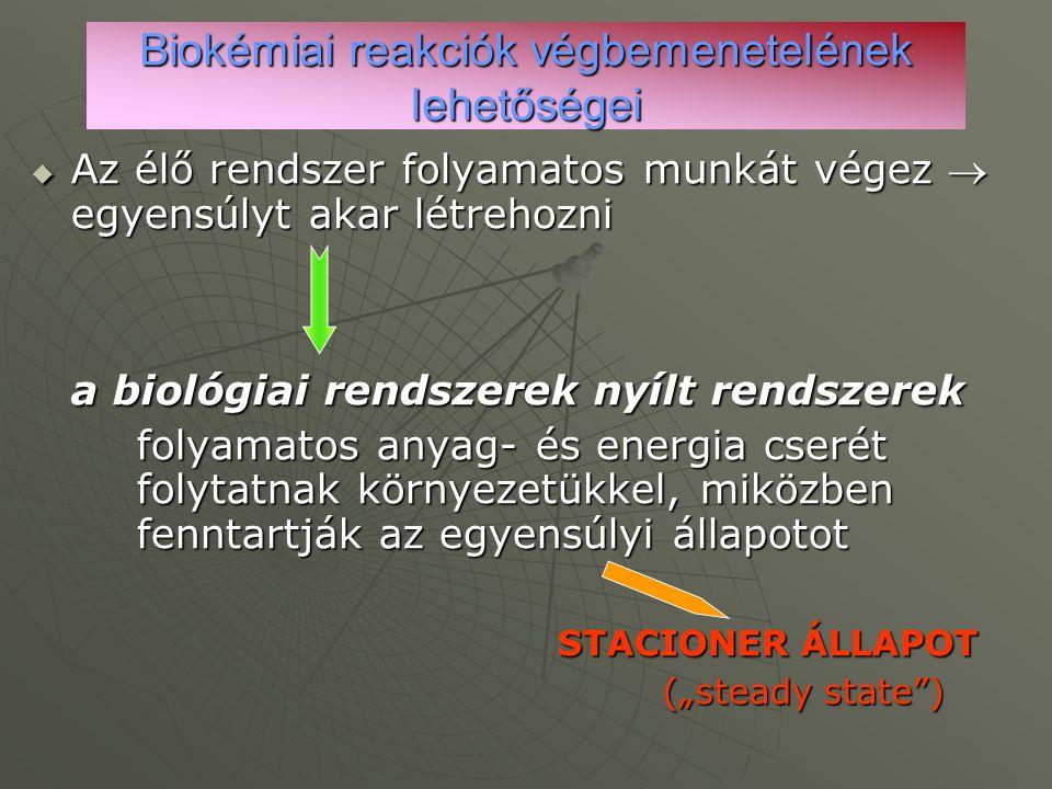 Biokémiai reakciók végbemenetelének lehetőségei  Az élő rendszer folyamatos munkát végez  egyensúlyt akar létrehozni a biológiai rendszerek nyílt re