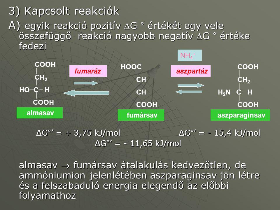 3) Kapcsolt reakciók A) egyik reakció pozitív G ° értékét egy vele összefüggő reakció nagyobb negatív G ° értéke fedezi ΔG°' = + 3,75 kJ/mol ΔG°' =