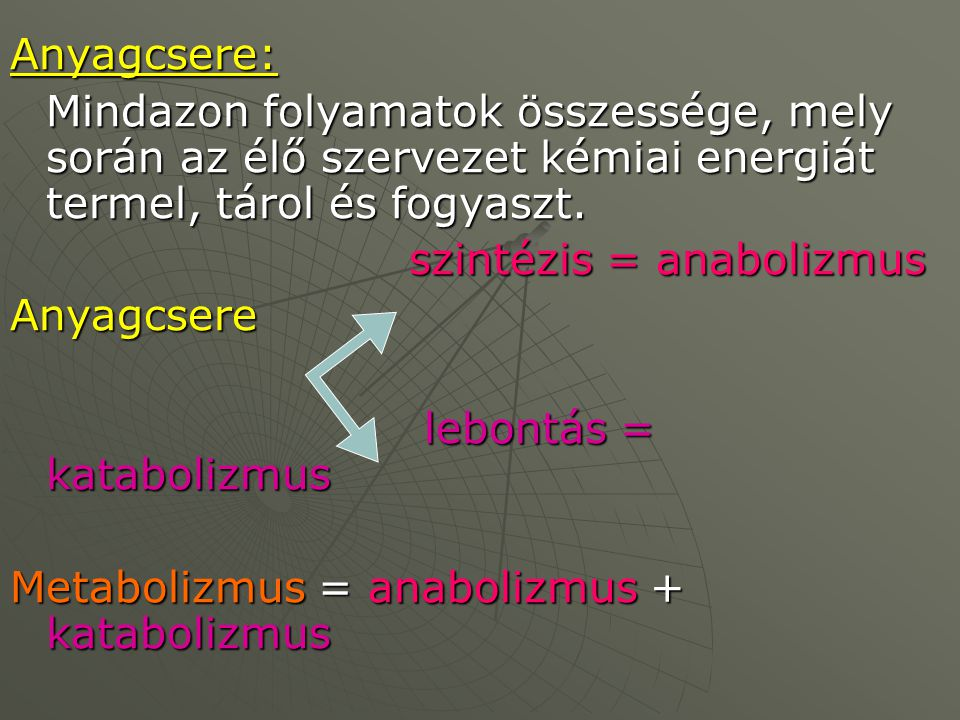 Anyagcsere: Mindazon folyamatok összessége, mely során az élő szervezet kémiai energiát termel, tárol és fogyaszt. szintézis = anabolizmus szintézis =
