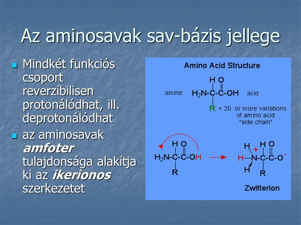 Az aminosavak sav-bázis jellege Mindkét funkciós csoport reverzíbilisen protonálódhat, ill. deprotonálódhat Mindkét funkciós csoport reverzíbilisen pr