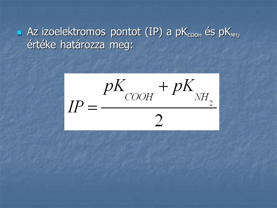 Az izoelektromos pontot (IP) a pK COOH és pK NH 2 értéke határozza meg: Az izoelektromos pontot (IP) a pK COOH és pK NH 2 értéke határozza meg: