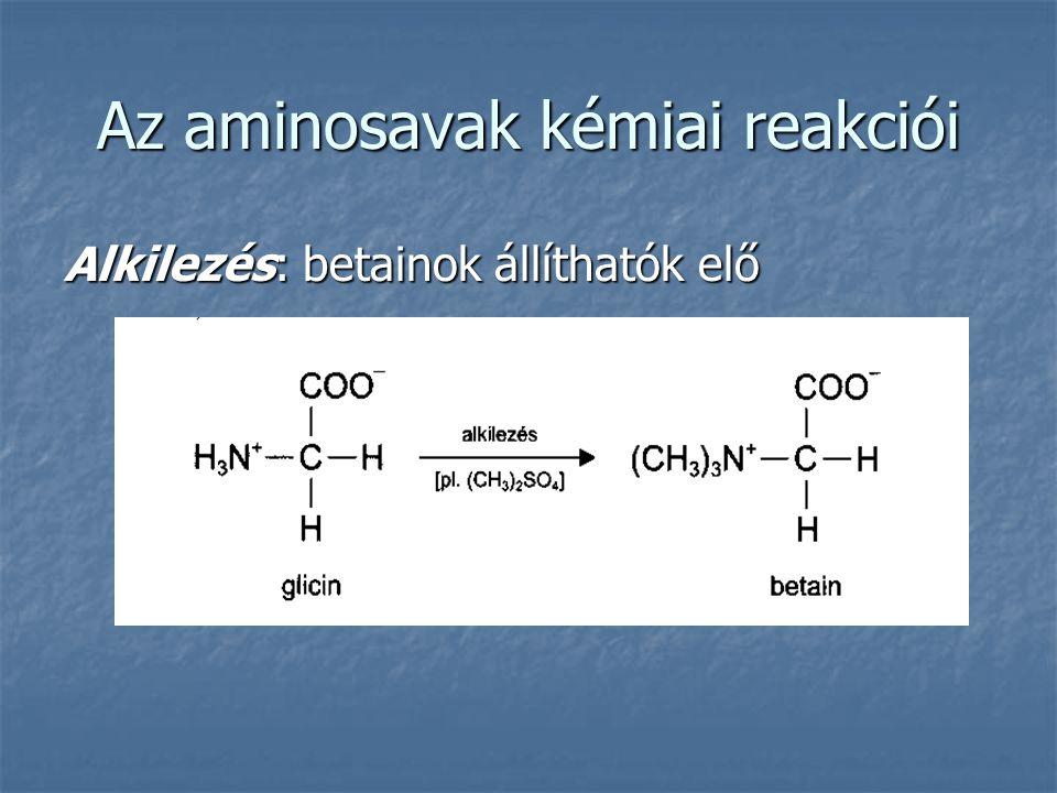 Az aminosavak kémiai reakciói Alkilezés: betainok állíthatók elő