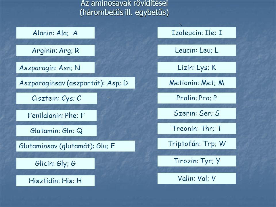 Aminosavelegyek analízise Elektroforézis Elektroforézis Ioncserélő kromatográfia Ioncserélő kromatográfia HPLC HPLC (High Performance Liquid Chromatograpy)