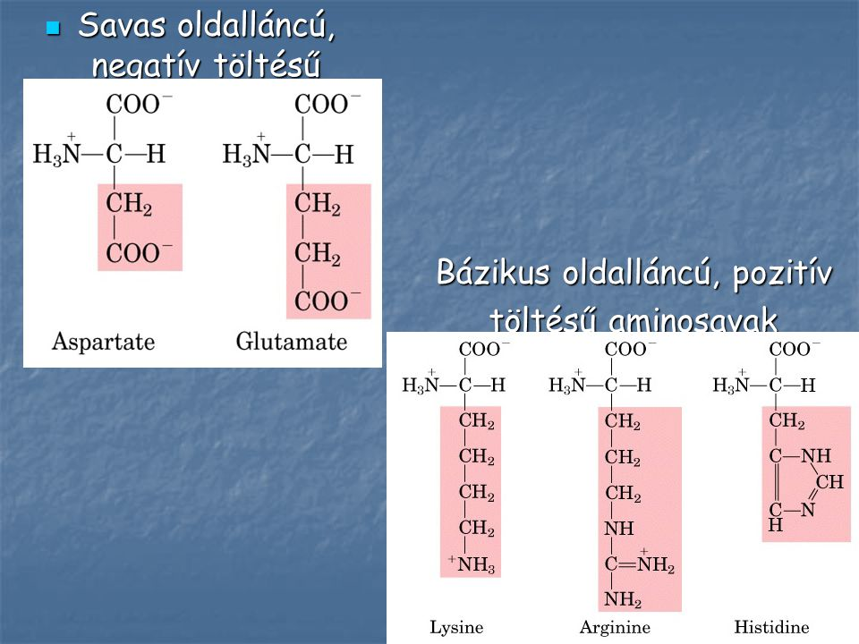 Néhány ritka aminosav N-metil-lizin N-metil-lizin N-metil-hisztidin N-metil-hisztidin 4-hidroxi-prolin 4-hidroxi-prolin 5-hidroxi-lizin 5-hidroxi-lizin  -karboxi-glutamát  -karboxi-glutamát