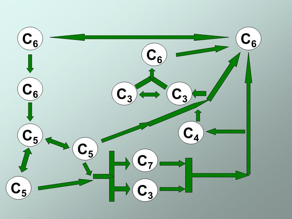 C6C6 C6C6 C5C5 C5C5 C5C5 C7C7 C3C3 C4C4 C6C6 C6C6 C3C3 C3C3