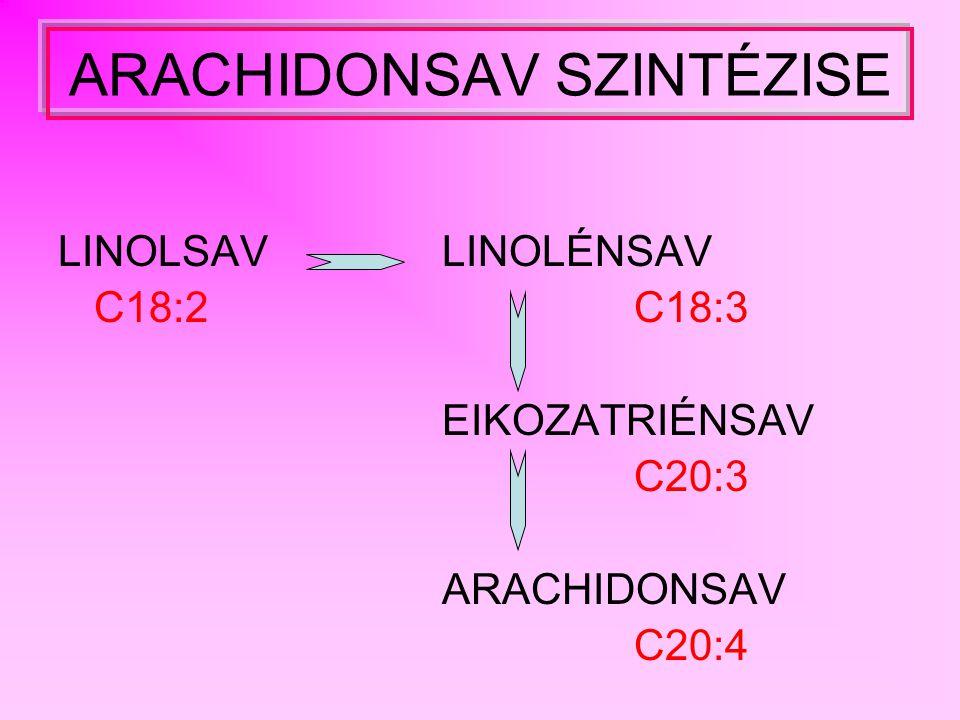 C 18 C 20 129 C O CoA O2O2 H2OH2O NADPH + H + NADP + kettős kötés kialakítás 14 9 6 C O CoA lánchosszabbítás 2 NADPH + H + 2 NADP + HOOC-CH 2 -C O CoA CO 2 + HCoA 118 C O CoA kettős kötés kialakítás O2O2 H2OH2O NADPH + H + NADP + 14 118 5 C O CoA