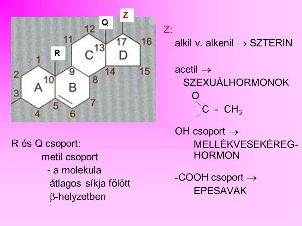 SZTEROID CSALÁDFA C 27 KOLESZTERIN C 21 PROGESZTERON KORTEXON 17 HIDROXI PROGESZTERON C 21 KORTIKOSZTERONKORTIZOL TESZTOSZTERON C 19 ALDOSZTERONKORTIZONANDROSZTERON ÖSZTRON C 18 ÖSZTRADIOL androgénekkortikoidok gesztagének