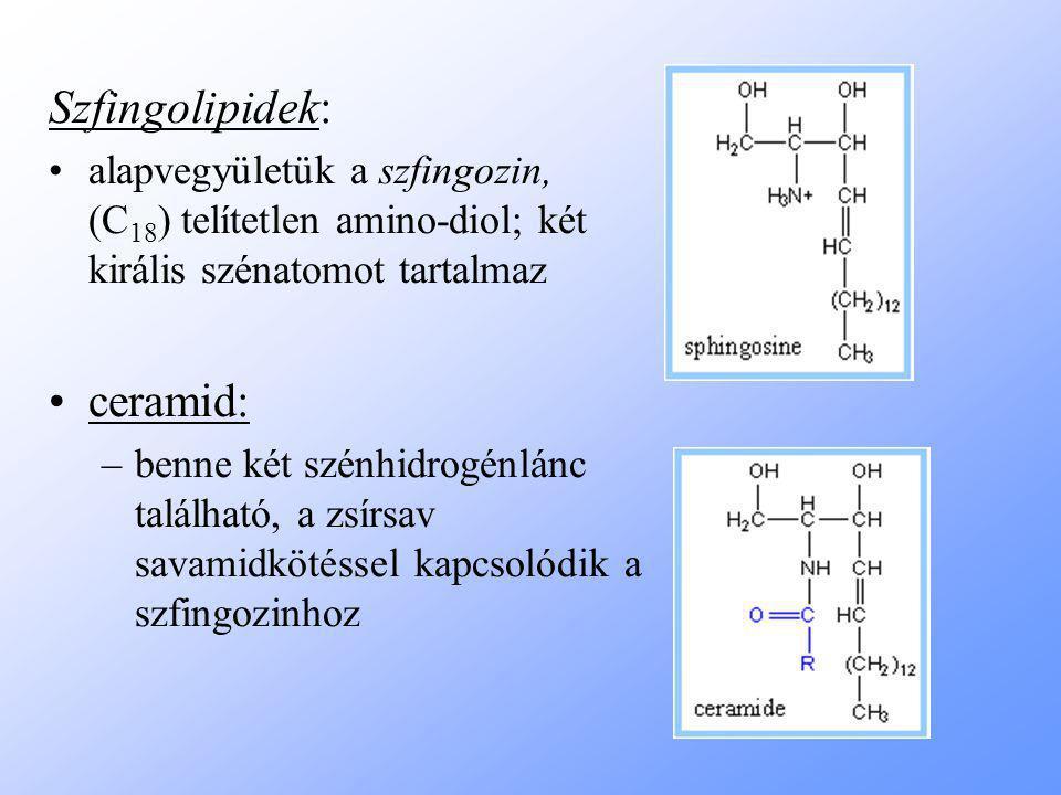 Szfingolipidek: alapvegyületük a szfingozin, (C 18 ) telítetlen amino-diol; két királis szénatomot tartalmaz ceramid: –benne két szénhidrogénlánc található, a zsírsav savamidkötéssel kapcsolódik a szfingozinhoz