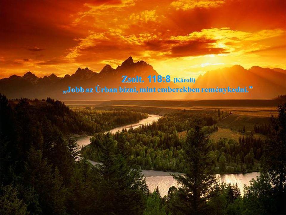 """Zsolt. 118:8 ( Károli ) """" Jobb az Úrban bízni, mint emberekben reménykedni."""