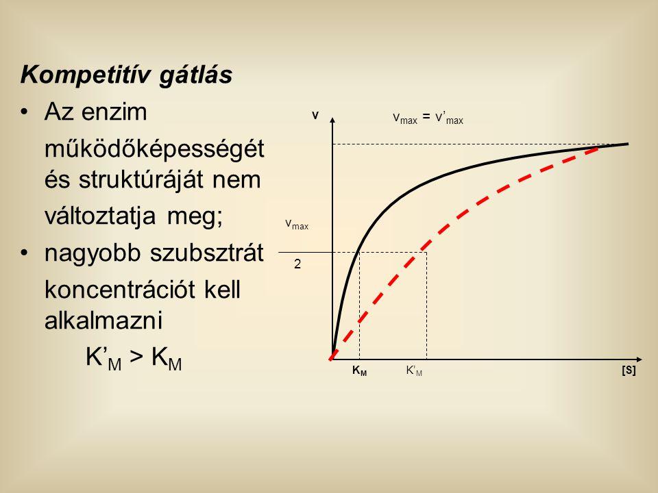 Kompetitív gátlás Az enzim működőképességét és struktúráját nem változtatja meg; nagyobb szubsztrát koncentrációt kell alkalmazni K' M > K M [S] v v m