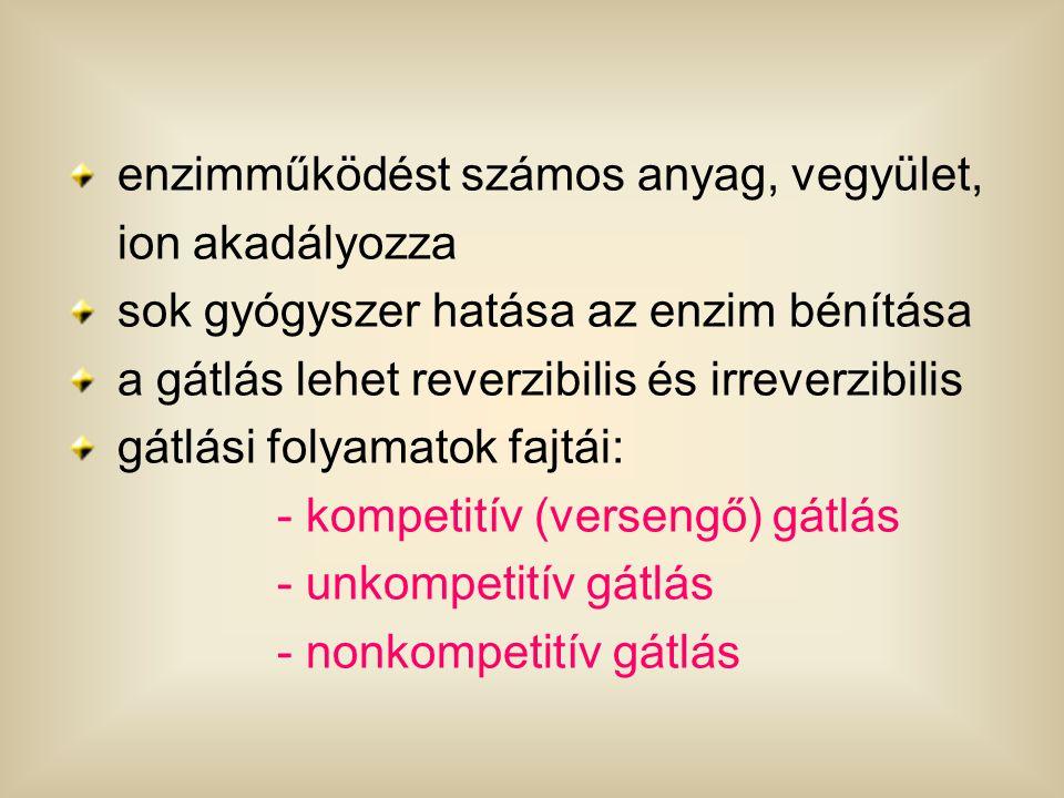 """KOMPETITÍV (versengő) GÁTLÁS Szubsztrát- analóg gátlás REVERZIBILIS, mert az enzim """"visszaképződik EI( E + T I ) E ESE + T S I S"""