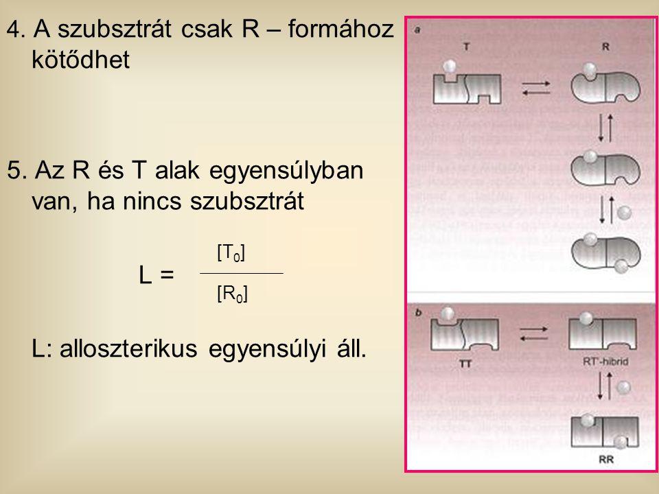 4. A szubsztrát csak R – formához kötődhet 5. Az R és T alak egyensúlyban van, ha nincs szubsztrát L = L: alloszterikus egyensúlyi áll. [T 0 ] [R 0 ]