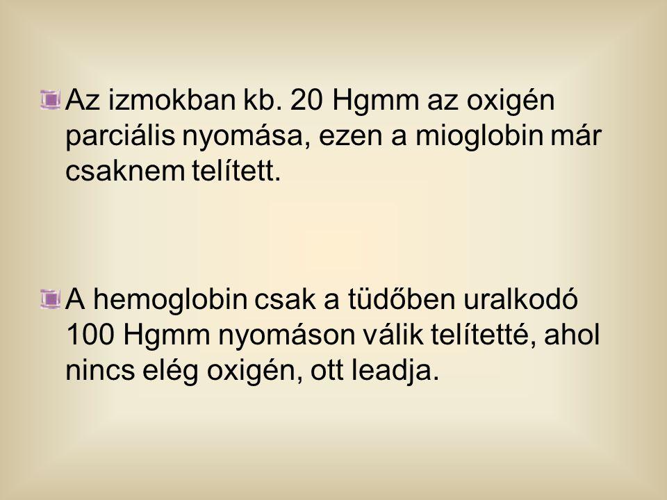 Az izmokban kb. 20 Hgmm az oxigén parciális nyomása, ezen a mioglobin már csaknem telített. A hemoglobin csak a tüdőben uralkodó 100 Hgmm nyomáson vál